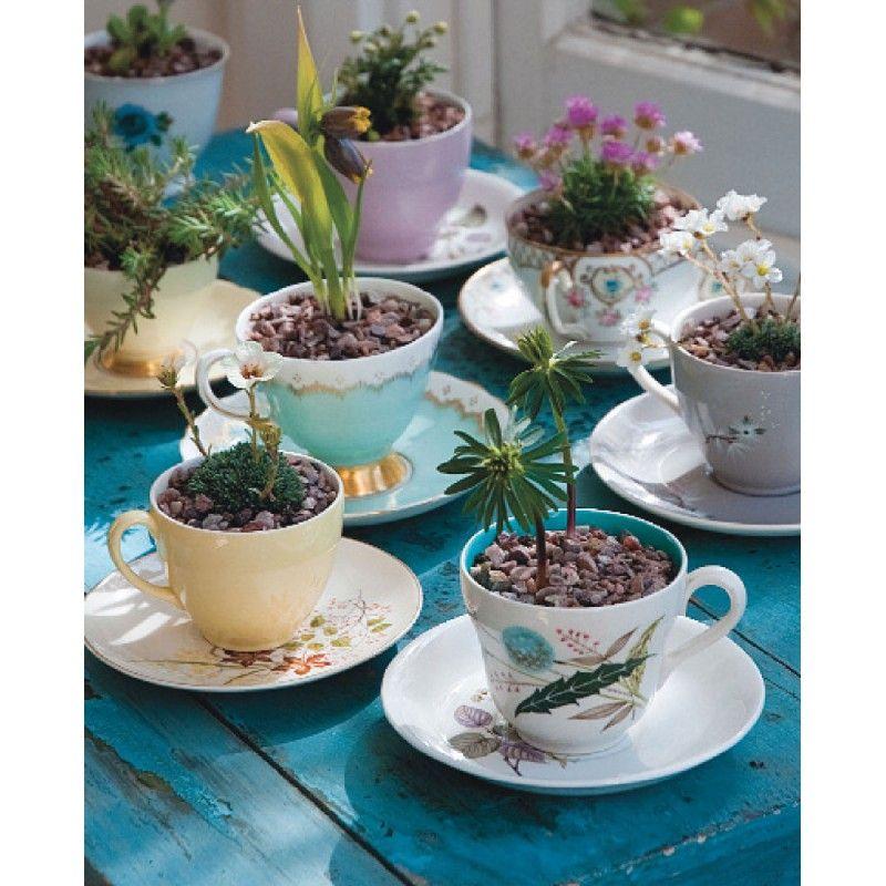 Altre nuove idee per il vostro giardino helpmummy for Idee x giardino