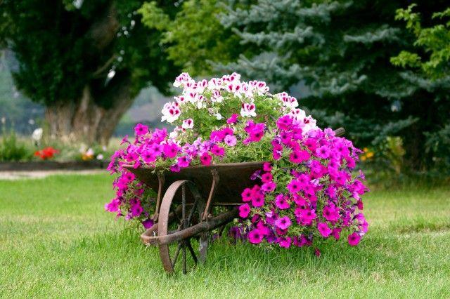 Altre nuove idee per il vostro giardino helpmummy - Sacchi di terra per giardino ...