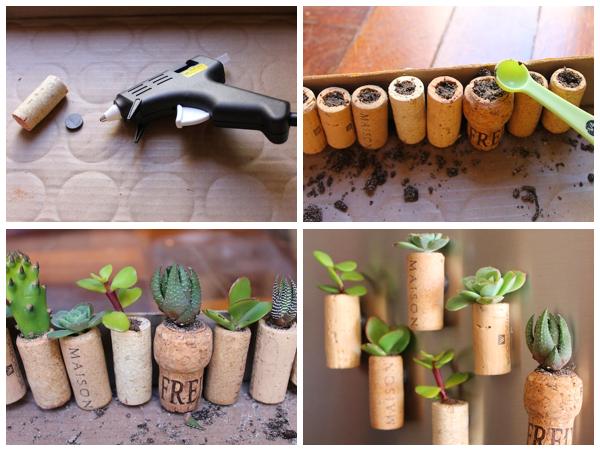 Altre nuove idee per il vostro giardino helpmummy - Sughero pianta da giardino ...