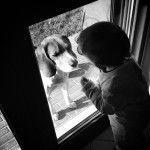 Il bellissimo rapporto tra animali e bimbi