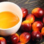 Fa bene l'olio di palma?