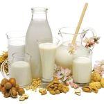 Latte vegetale homemade