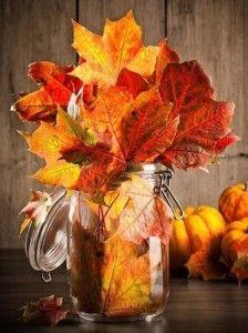 barattolo-con-foglie