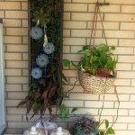 Piccoli giardini in verticale