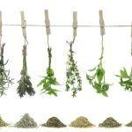 Usare le erbe aromatiche per le pulizie di casa